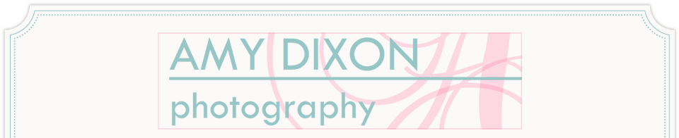 Amy Dixon Photography logo